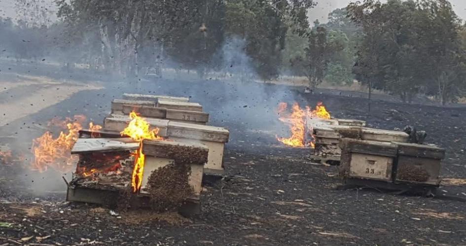 اندلاع 24 حريقاً بسبب الطائرات الحارقة في مستوطنات غلاف غزة